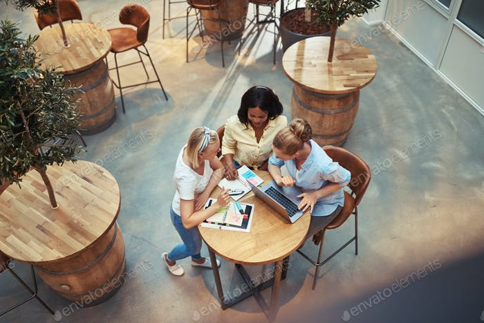 Diverse businesswomen working around a table in an office lounge