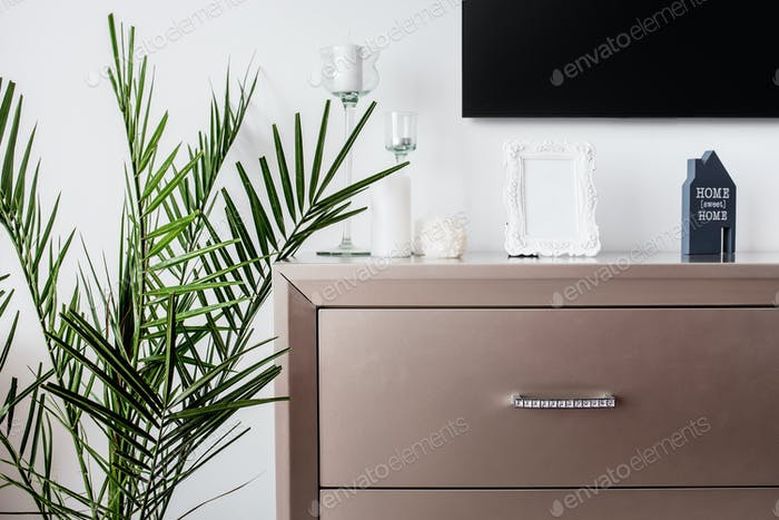 Tv stand and plant decor on modern bedroom design