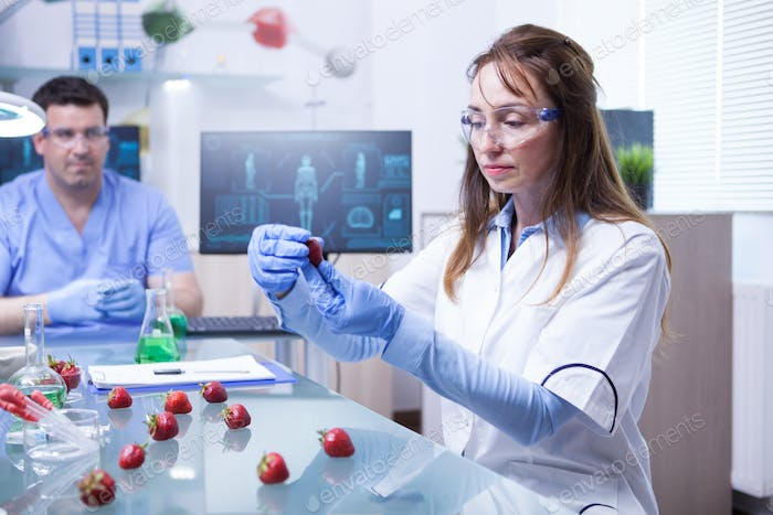 Female scientist and her assistant working on a cure for strawberries parasites