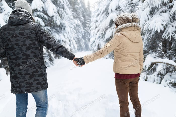 Young Couple Walking In Snow Forest Outdoor Man And Woman Holding Hands Back View