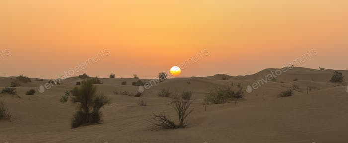 Sand dunes desert near Dubai with sunset. United Arab Emirates