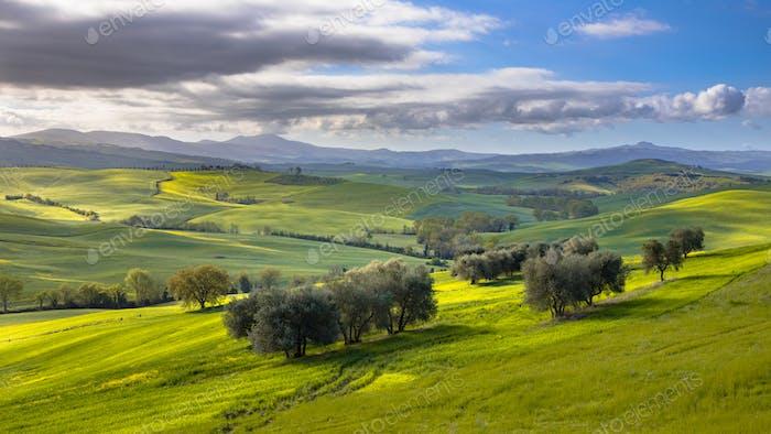 Tranquil landscape Tuscany