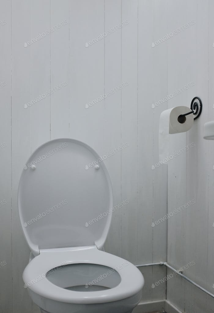 white restroom, toilet, toilet paper and sink composition