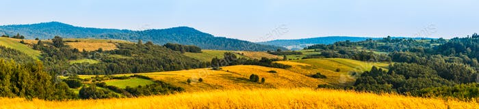 Panorama landscape of rural Sub-Carpathian region area covered with fields, meadows and forests