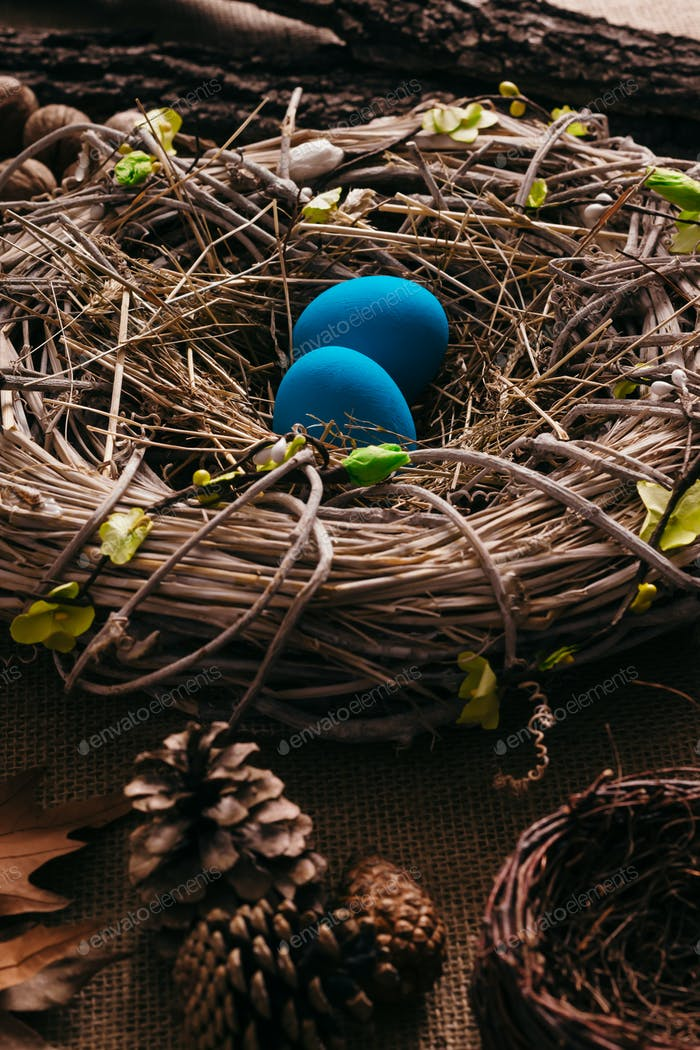 Blue Easter eggs in bird nest