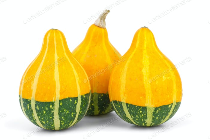 Three decorative fancy pumpkins