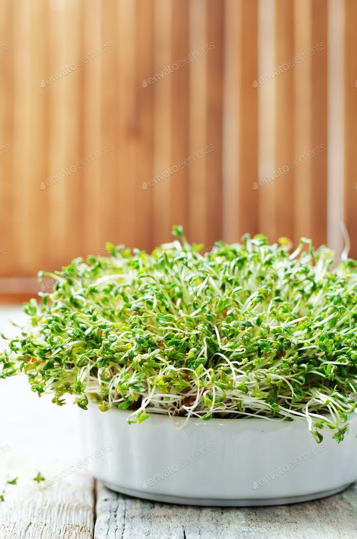 sprouts in a white bowl