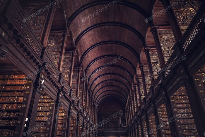 DUBLIN, IRLAND - 14. JULI 2018: The Long Room in the Trinity C