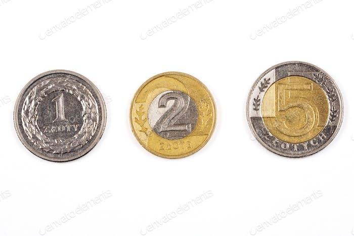 Polnische Münzen