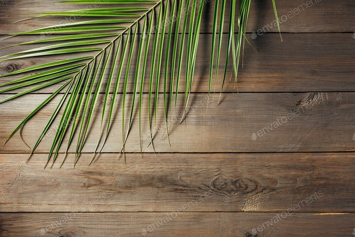 Palm leaf on a old wooden boards