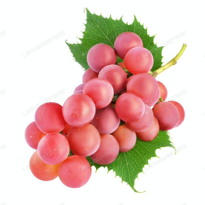 Red grape bunch with leaves isolated