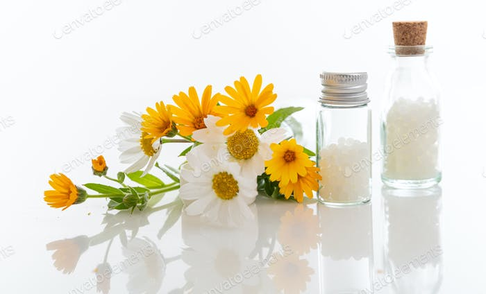 Wild flowers and homeopathic globules isolated on white background