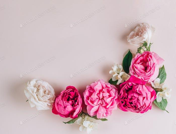 Rosen auf beigem Hintergrund
