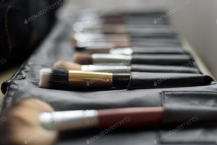brushes makeup artist