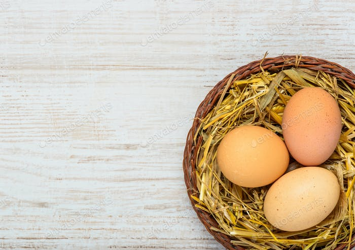 Straw Nest with Eggs and Copy Space