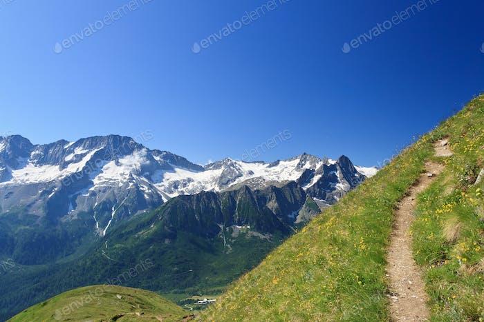 alpine footpath