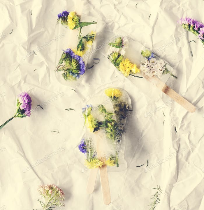 Homemade summer wildflower ice pop