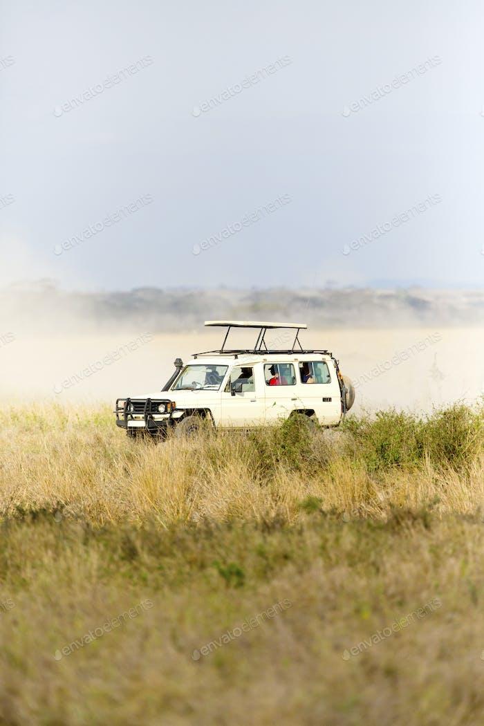 Safari-Touristen auf Pirschfahrt in Serengeti
