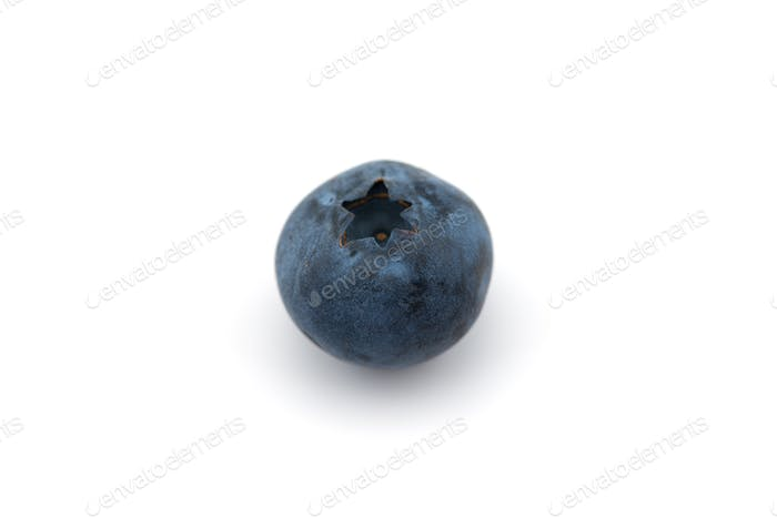 Freshly picked blueberries  isolated on white background
