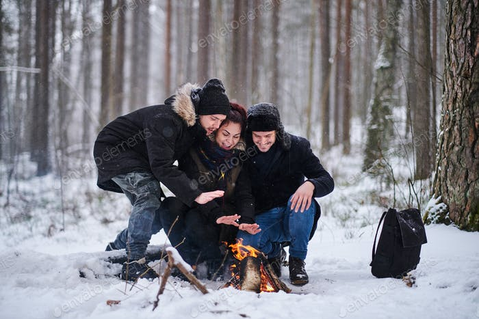 Friends of travelers bask in a fire in the snowy forest