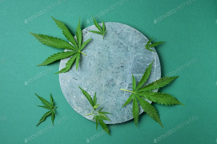 Green hemp leaves on marble background. Top view, copy space. Close up of cannabis leaf