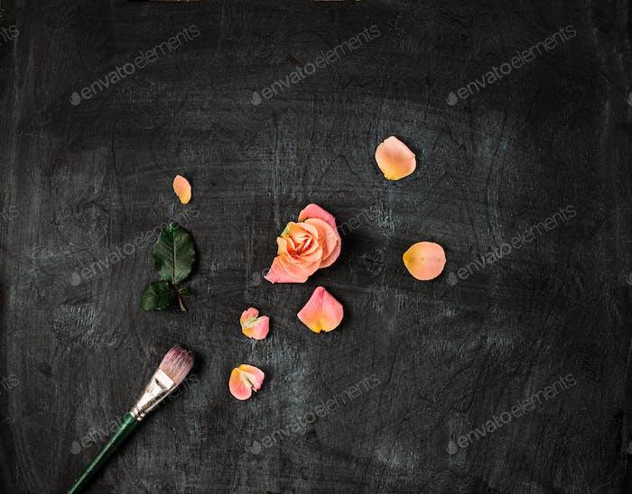 paint brushe on wooden background
