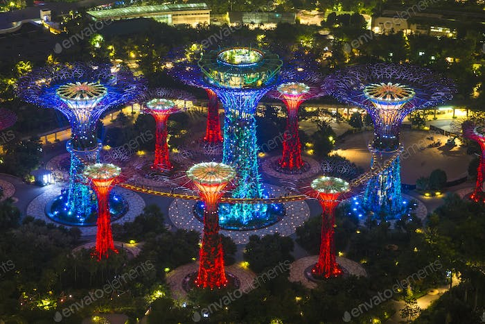 High angle view of illuminated Supertree Grove at Gardens by the Bay, Singapore at night.