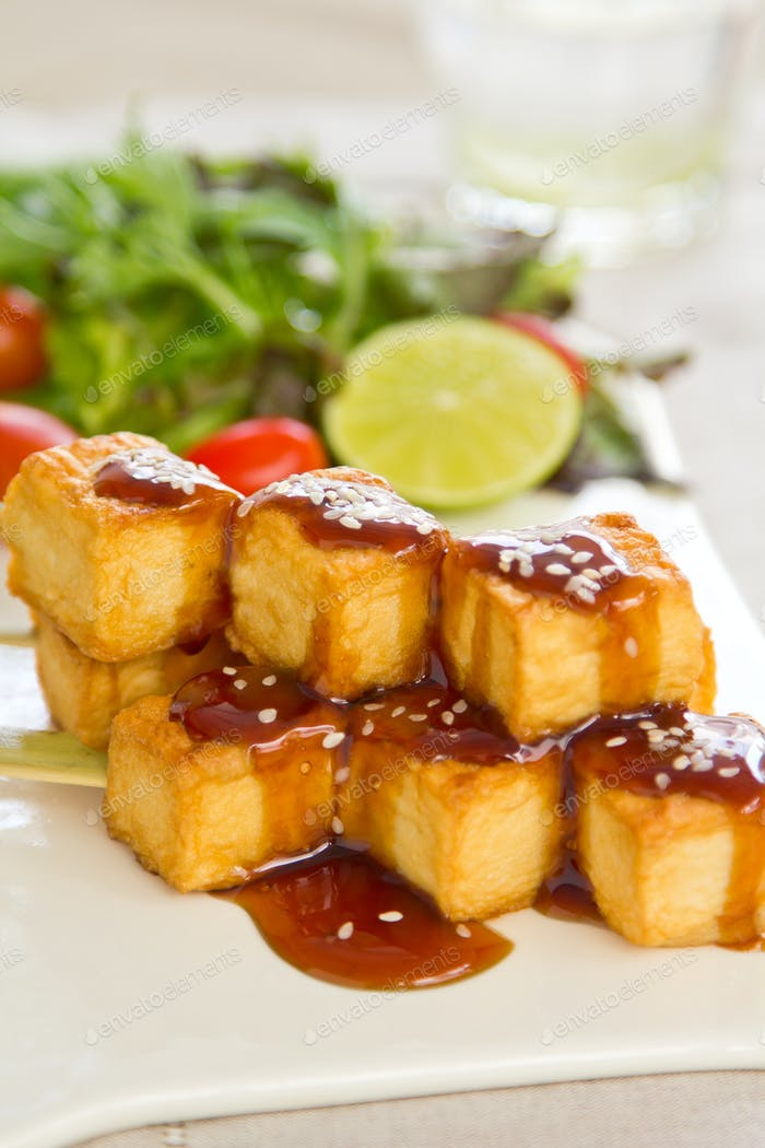 Grilled Tofu with Teriyaki sauce and salad