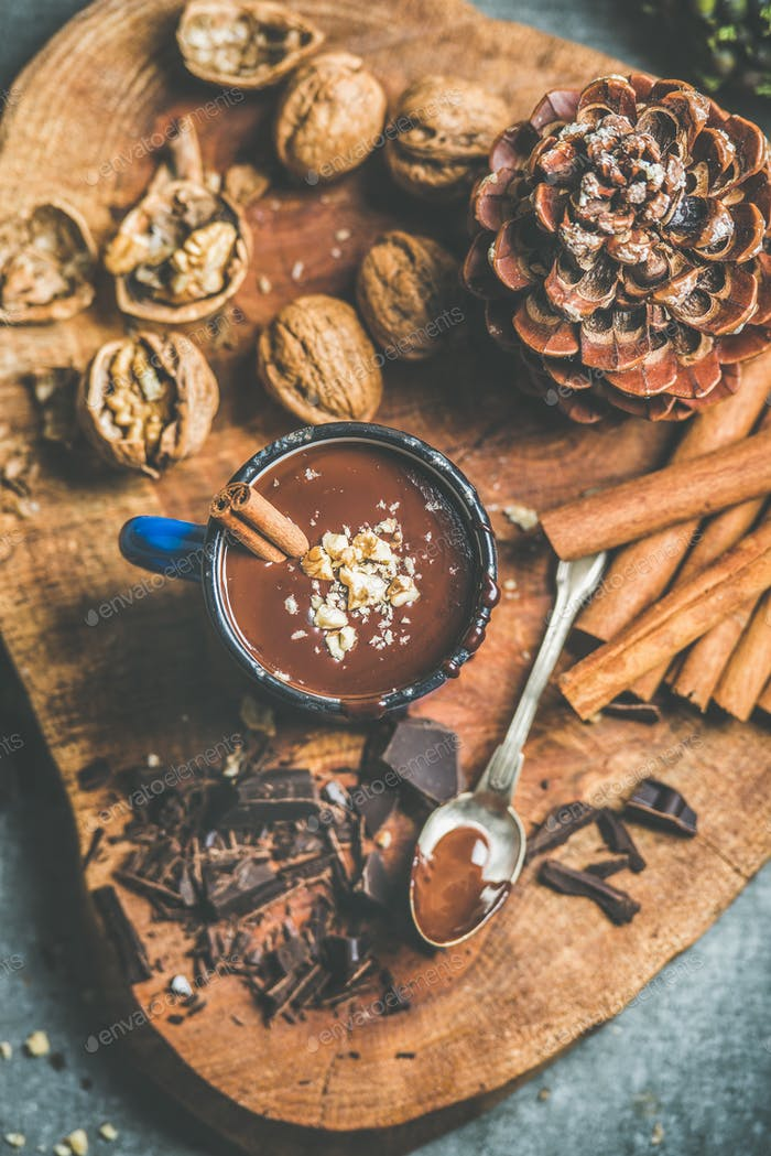 Rich hot chocolate with cinnamon and walnut crumb in mug