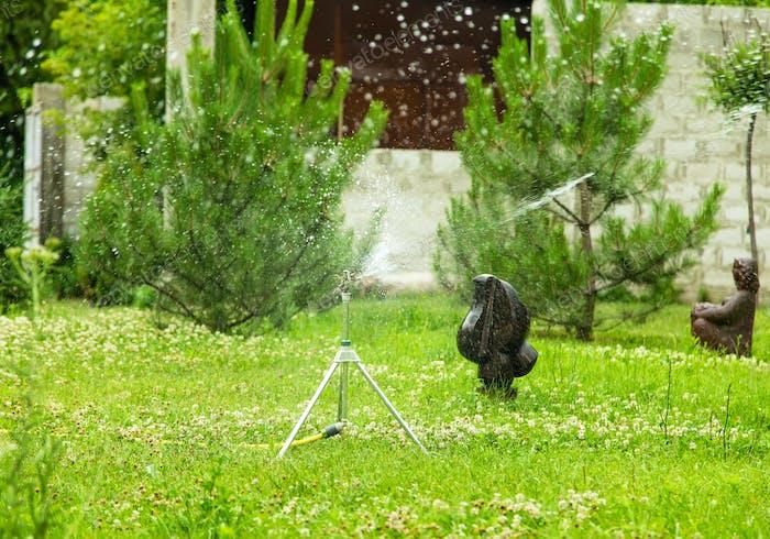 Working garden sprinkler.