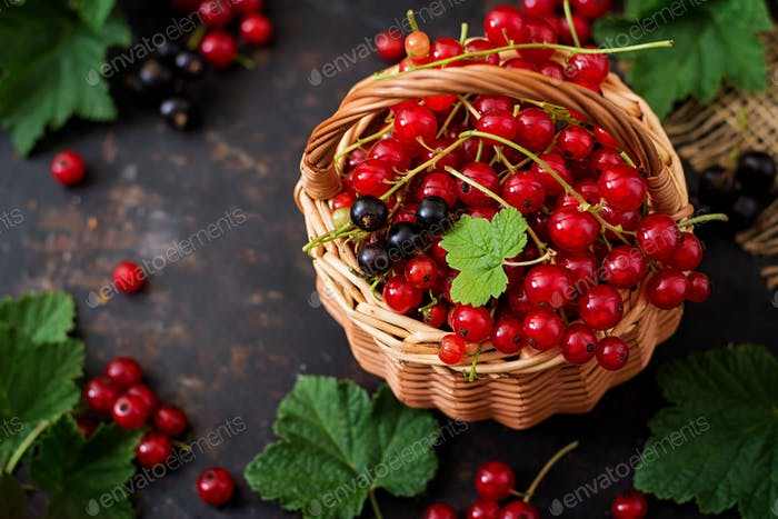 Basket with Red and Black currant with leaves on a black background.