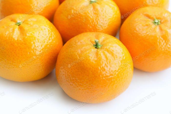 tangerine on white background