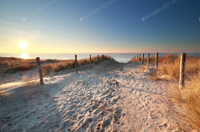 sunlight over sand path to North sea beach