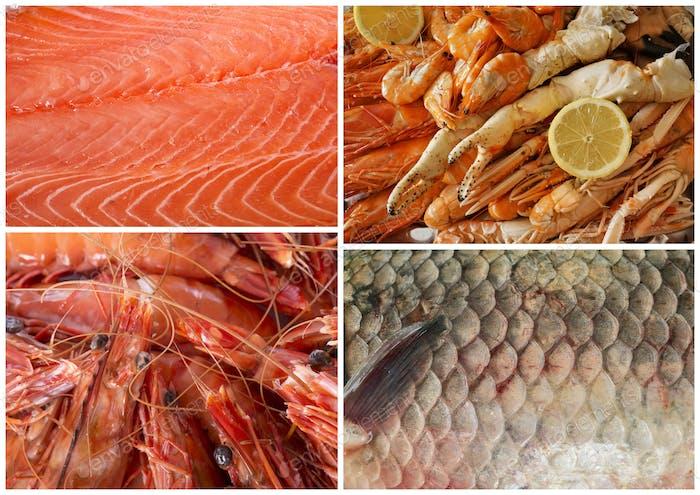 seafood in studio