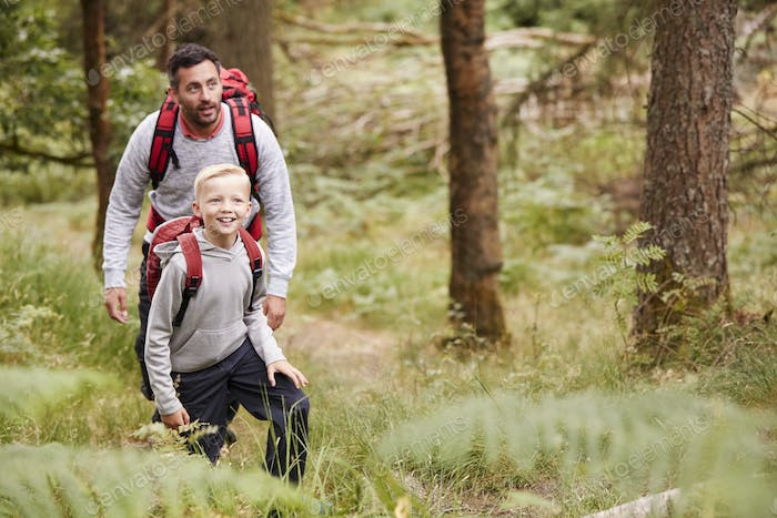 A boy and his father admiring the view while hiking in a forest, front, elevated view