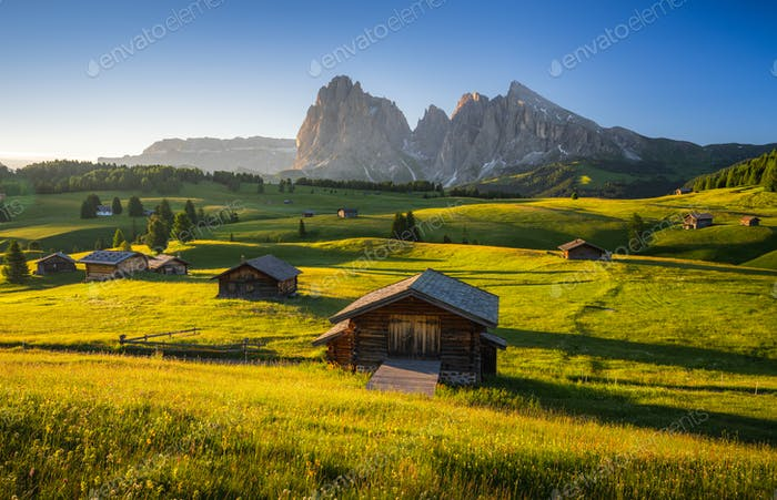 Seiser Alm (Alpe di Siusi) with Langkofel mountain at sunrise, Italy