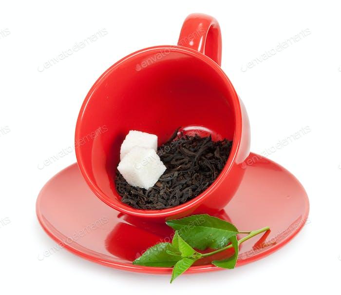 Teetasse mit schwarzem Tee und Zuckerscheiben