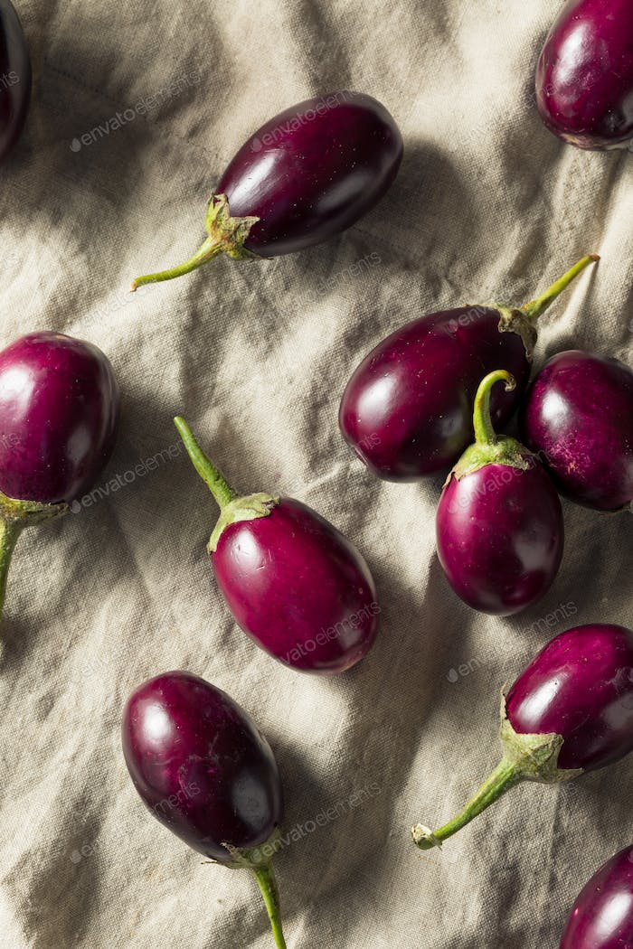 Raw Organic Purple Indian Eggplants