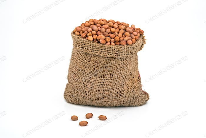 Peanuts in Bag on White Background