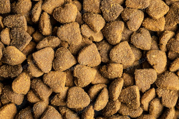 Dried kibble pet food. Heart shape dried animal food.