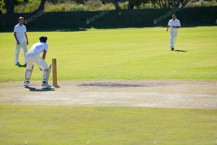 Cricket match at grassy field