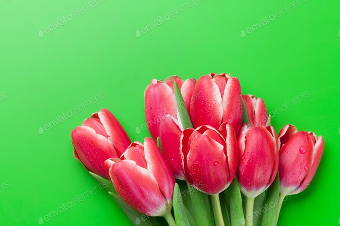Red tulip flowers bouquet over green background
