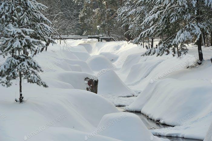 Paisaje de invierno de un río de montaña en la nieve, alrededor del bosque