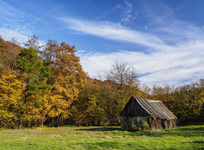 Autumn in Ojcow National Park, Poland