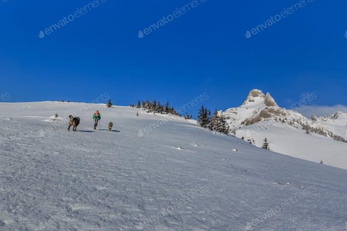 Bergsteigen im Winter