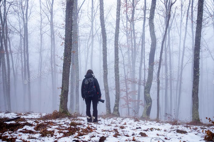 Lonely traveler in misty forest