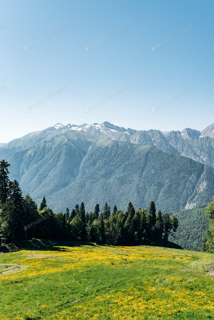 View of Mountains with green forest landscape