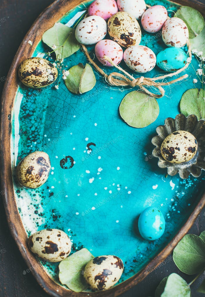 Colorful quail eggs, flowers, leaves for Easter over blue tray