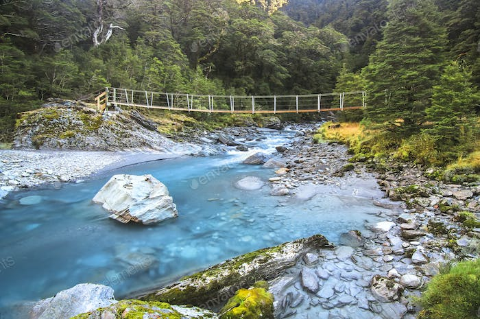 Blue Water and a Suspension Bridge in New Zealand