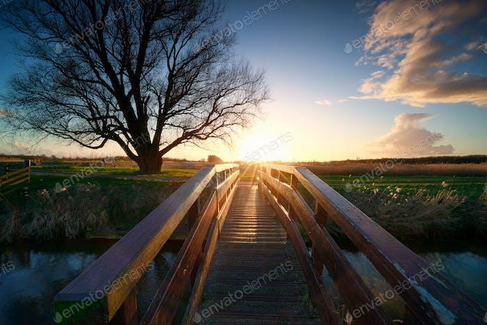 sunshine behind wooden bridge over river
